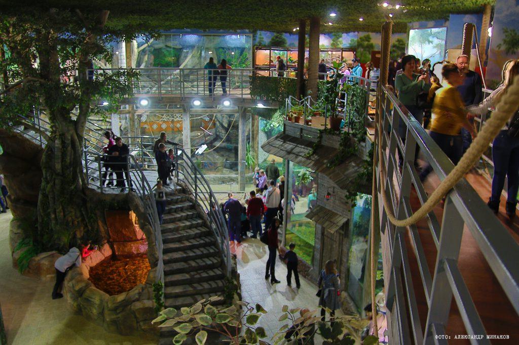 Тульский зооэкзотариум - необычные экскурсии в Туле